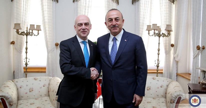 Georgian, Turkish FMs to meet today
