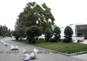 Hacı Zeynalabdin Tağıyevin heykəli burada qoyulacaq - FOTO - VİDEO - YENİLƏNİB