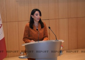Ombudsman: Azerbaijan still suffers from military provocations