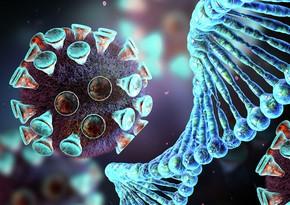 В ВОЗ оценили эффективность тестов против новой мутации COVID-19