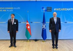 Хикмет Гаджиев провел встречу с заместителем генсека НАТО