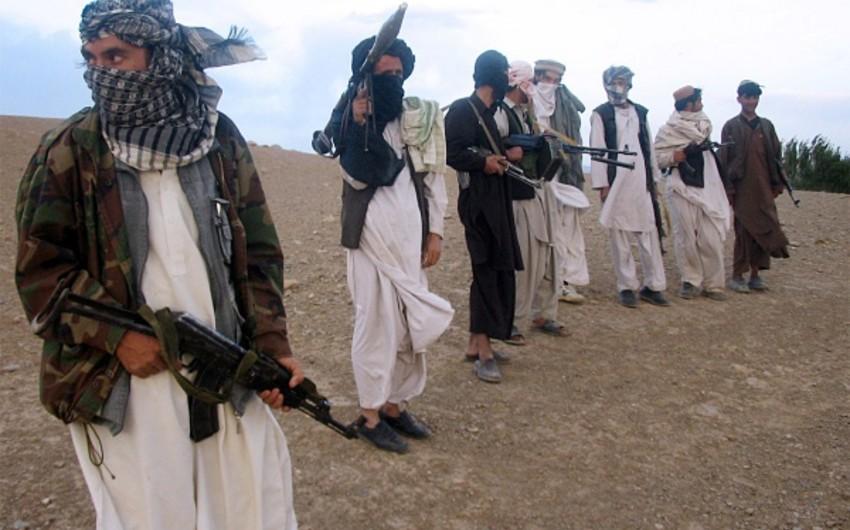Талибы объявили о перемирии на три дня