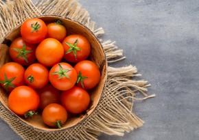 Rusiya yenidən Azərbaycanın 5 pomidor istehsalçısına ixrac qadağası qoyub