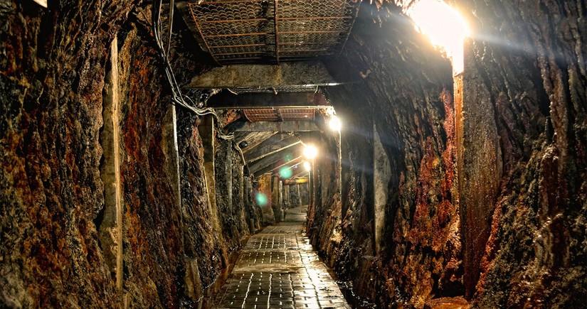 Braziliyada 13 ildə 300-dən çox insan köləlikdən xilas edilib