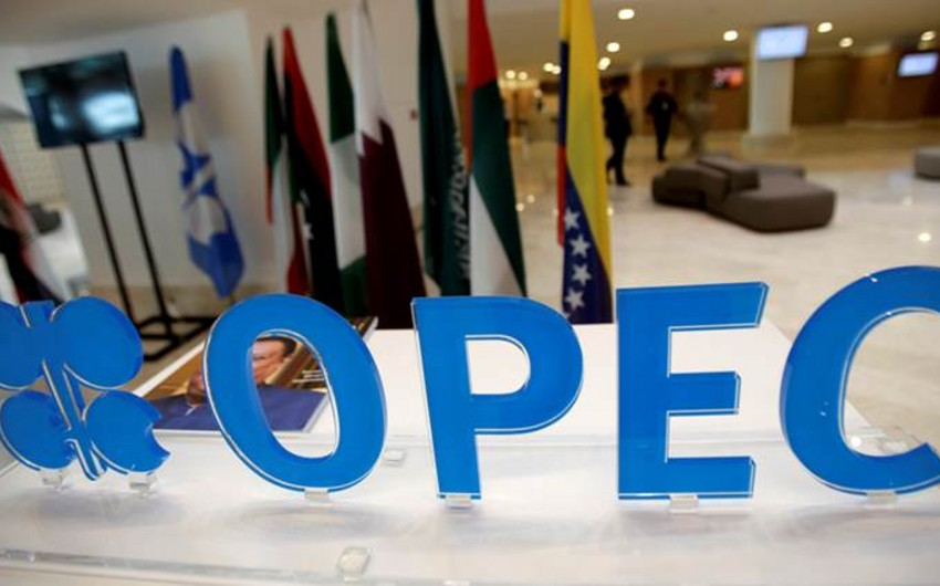 Azerbaijan's Energy Minister to attend 6th meeting of OPEC plus ministers