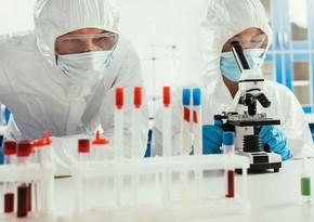 New dangerous bacterium detected in Russia