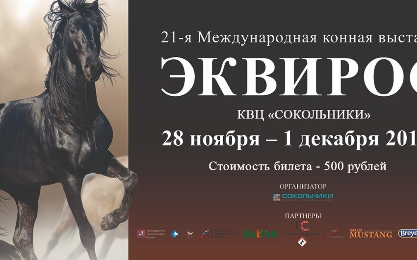 Moscow to host first exhibition of Karabakh horses