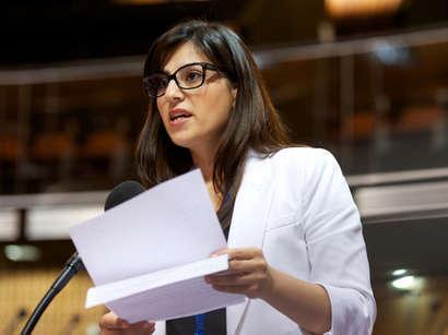 Депутат Милли Меджлиса примет участие на заседании Нижнего комитета по Европейской социальной хартии