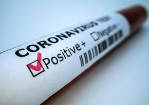 Coronavirus kills over 600 journalists in ten months