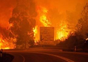 В Греции третьи сутки тушат лесной пожар к западу от Афин