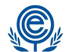 14th ECO summit kicks off virtually
