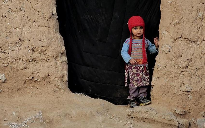 BMT: İyirmi ölkədə hər il ən azı 70 min vətənsiz uşaq dünyaya gəlir