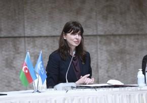 Резидент-координатор ООН: Азербайджан добился успехов в борьбе с изменением климата