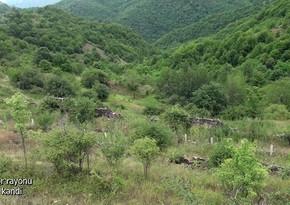 Kəlbəcərin Günəşli kəndi - VİDEO