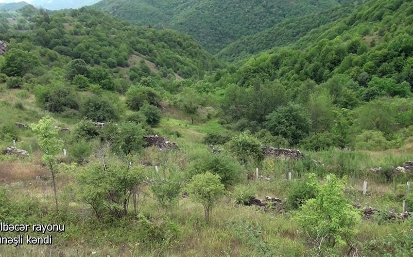 Видеокадры из села Гюнешли Кельбаджарского района