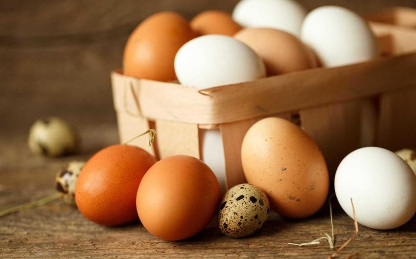 Azərbaycan Quşçular Cəmiyyəti ölkədə yumurta qıtlığının olması barədə iddialara münasibət bildirib