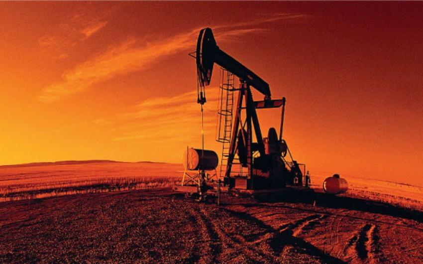 Misir yeni neft yataqlarının kəşfiyyatı və hasilatı üçün müqavilələr bağlayıb