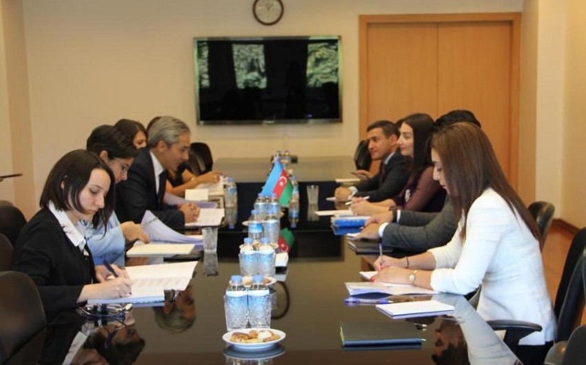 Press services of Azerbaijani and Turkish Foreign Ministries hold consultations