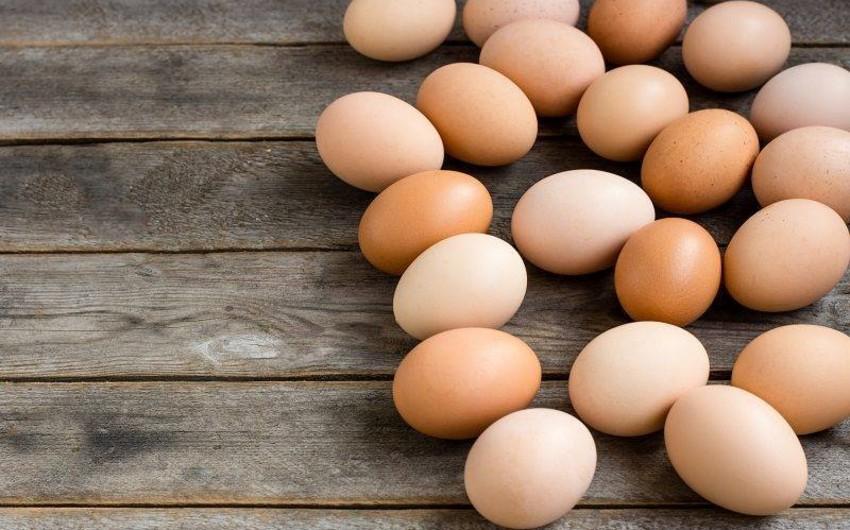 Осенью цены на куриные яйца могут снизиться
