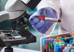 Azerbaijan reports 1,178 new coronavirus infections, 24 deaths