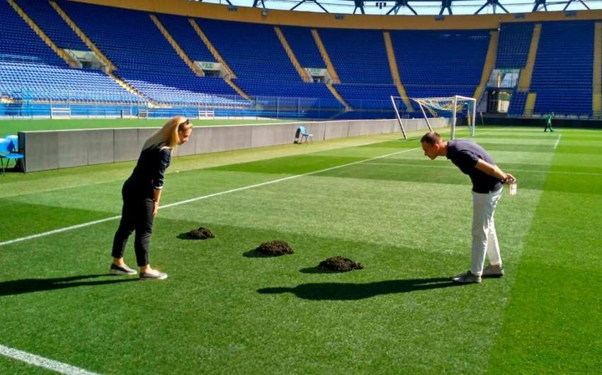 Çempionlar Liqasının oyununun keçiriləcəyi stadionda köstəbəklər peyda olub