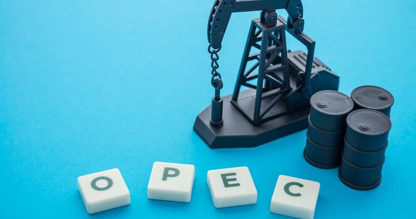 Neft OPEC+in qərarları ərəfəsində bahalaşıb