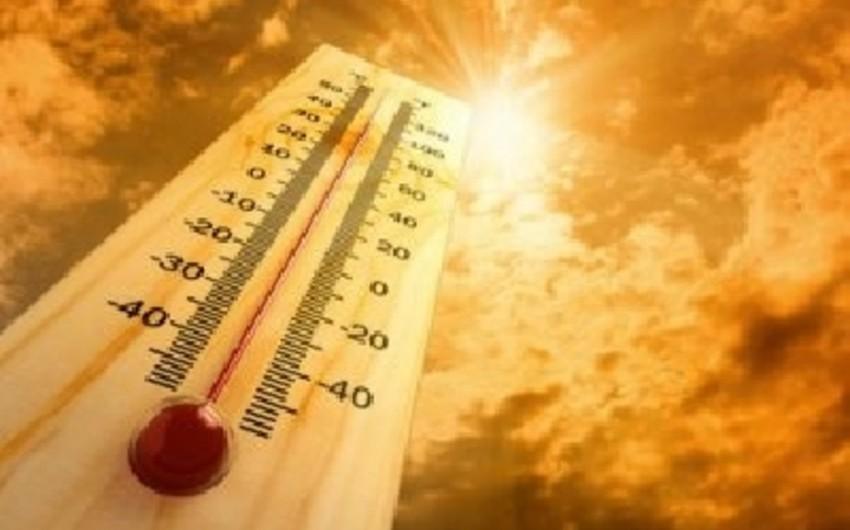 Завтра в Баку ожидается 40 градусов тепла