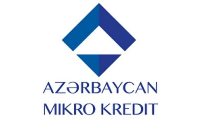 """""""Azərbaycan Mikro-Kredit""""in aktivləri 23% azalıb"""
