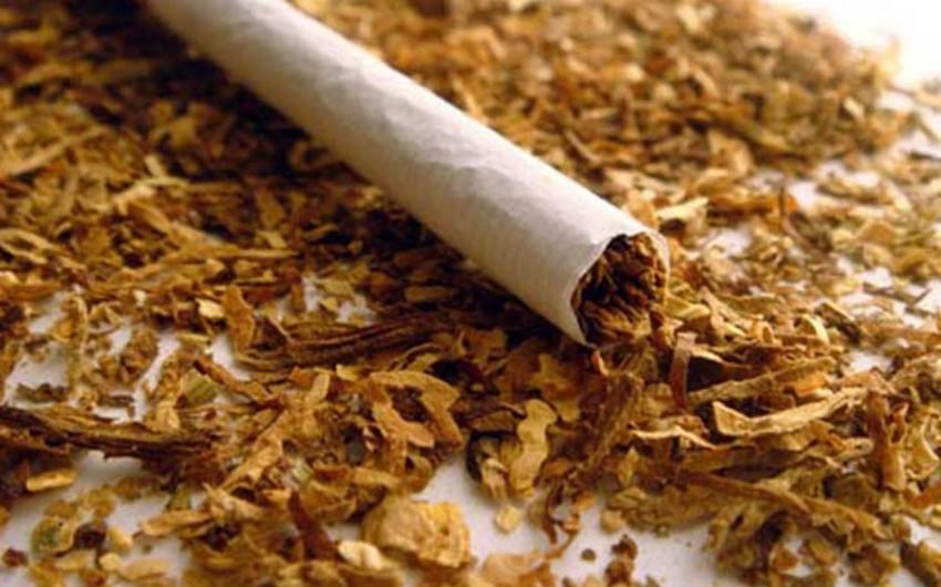 Azərbaycan tütün idxalı və ixracını azaldıb