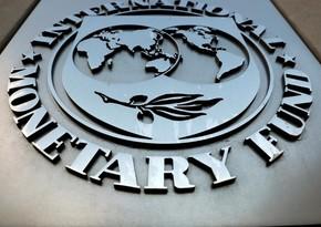 IMF Gürcüstana əlavə 111 milyon dollar ayıracaq