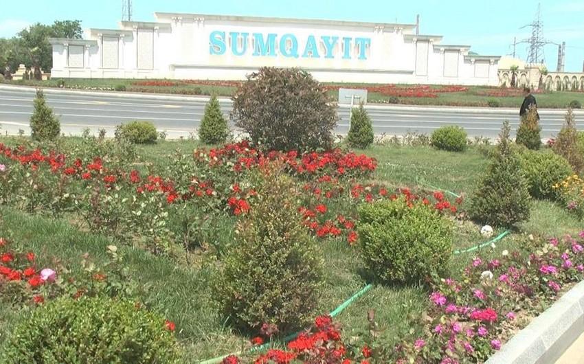 Sumqayıt şəhərini çinlilər bəzəyəcək