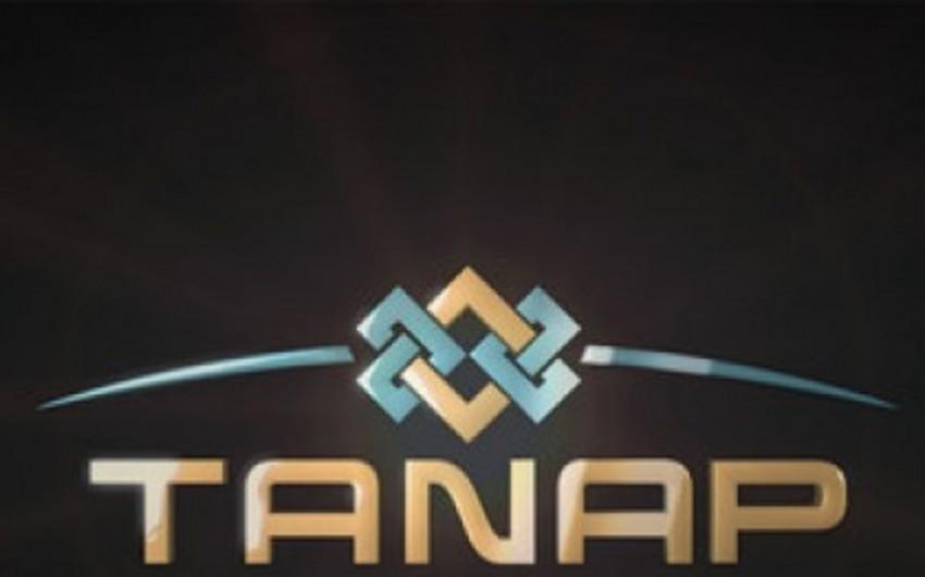 TANAP layihəsinin icrası 25% ucuz başa gələcək