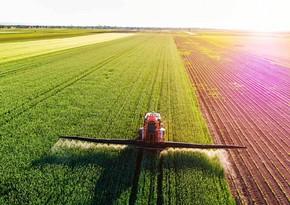 Аграрный сектор в Азербайджане вырос почти на 4%