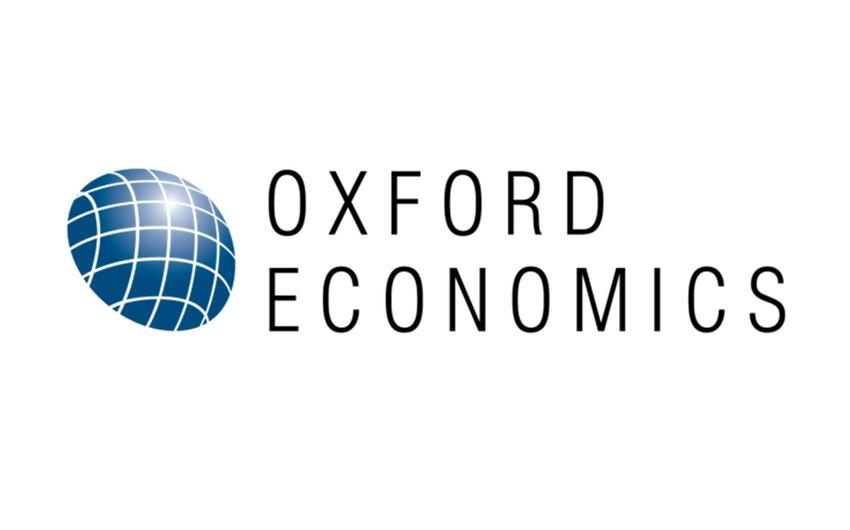 Oxford Economics: Türkiyə inkişaf etməkdə olan ölkələrdən ən həssasıdır