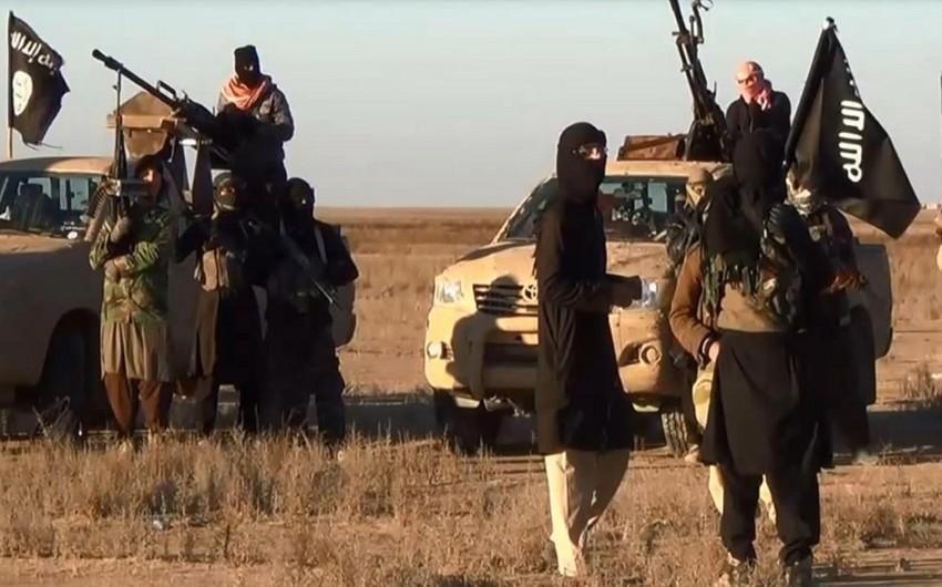 İŞİD-a qoşulan türk qadın Almaniyaya gətirilib - FOTO