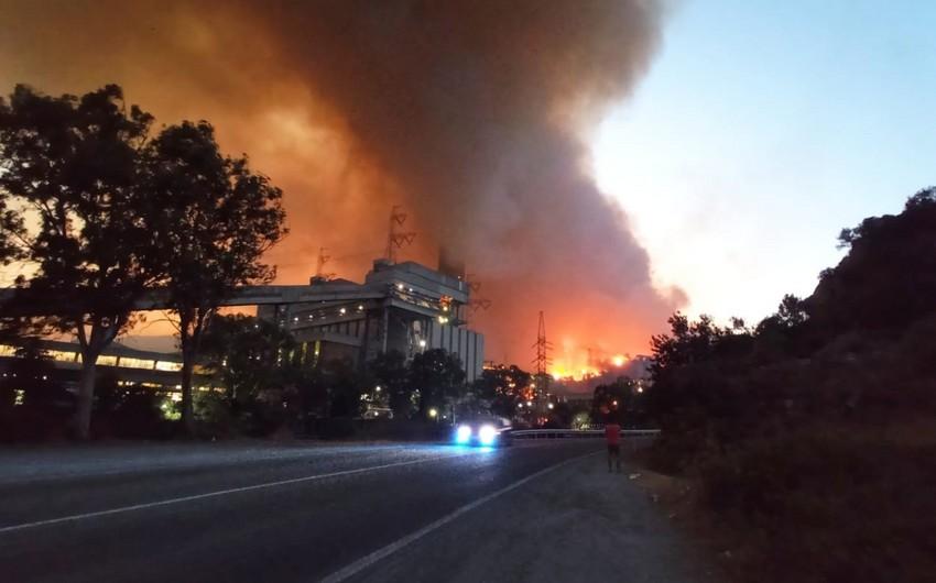 Türkiyədə istilik elektrik stansiyası meşə yanğını ilə əlaqədar yanır