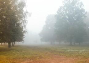 Sabah ölkə ərazisində hava yağıntılı, küləkli olacaq