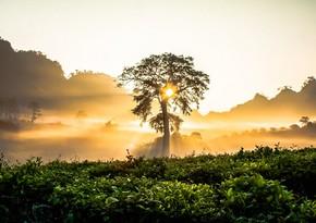 Sabahın hava proqnozu