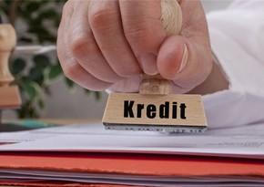 Hesablama Palatası: Kənd təsərrüfatında kredit faizlərinin yüksək olması ümidverici deyil