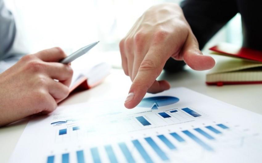 Azərbaycan iqtisadiyyatına kredit qoyuluşları 4% azalıb