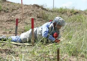 ANAMA: За прошлую неделю на освобожденных землях обнаружено 87 мин