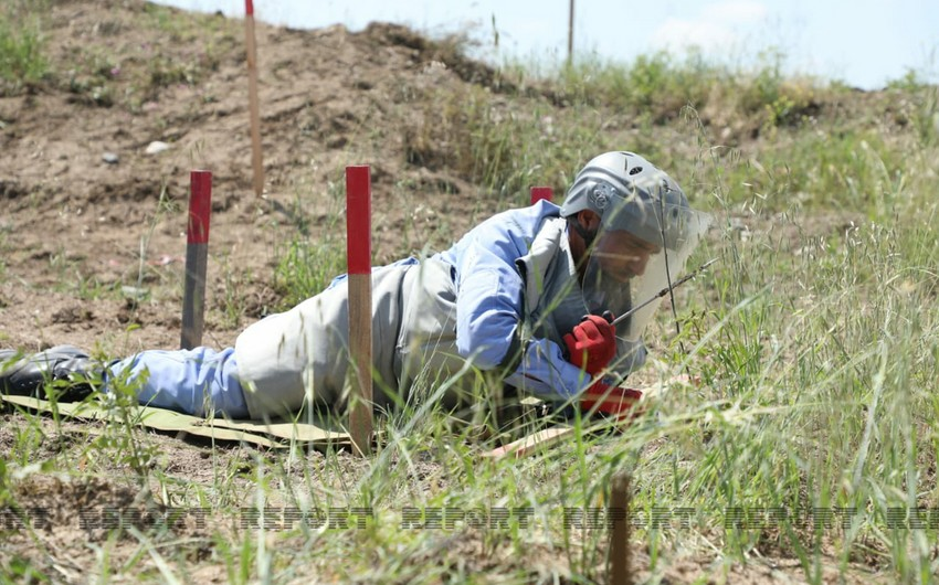 ANAMA provides information on mines found in liberated areas