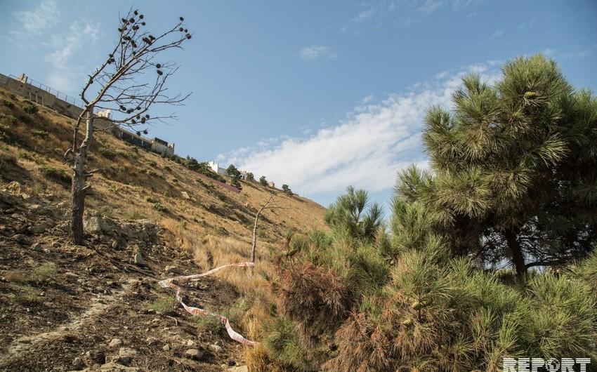 Badamdarda evlərin hasarlarındakı çatların üzərində mayaklar quraşdırılıb - VİDEO - YENİLƏNİB-2