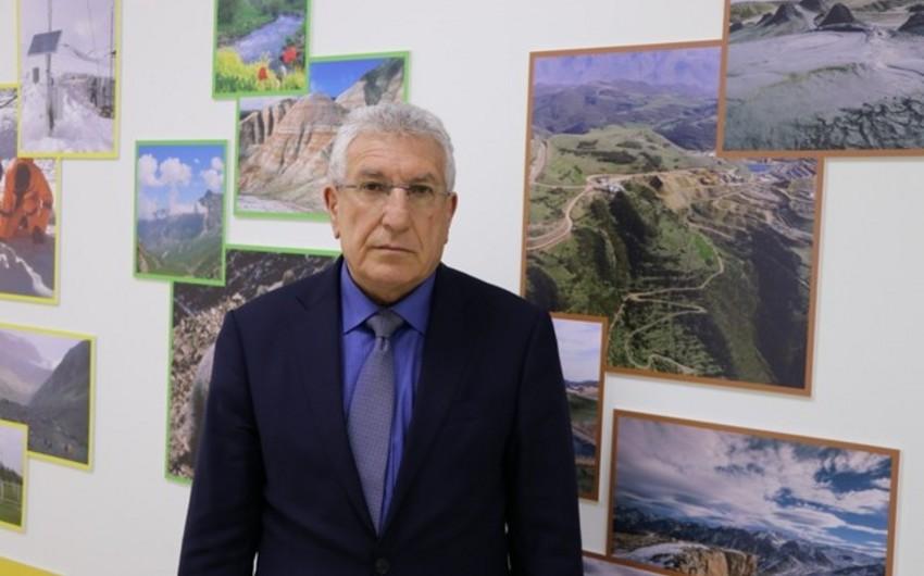 Инженер-лесник министерства: В Шеки и Гахе не было фактов вырубки деревьев - ИНТЕРВЬЮ