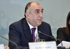 Глава МИД: Продолжающееся нарушение прав человека подрывает доверие азербайджанского народа к справедливости международного права