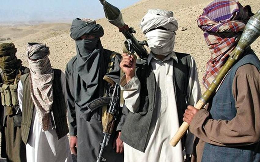 """""""Taliban"""" Fərah vilayətində 340 məhbusu azad edib"""