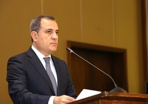 Azerbaijani Foreign Minister: Armenian leadership delayed the negotiation process by hook or by crook