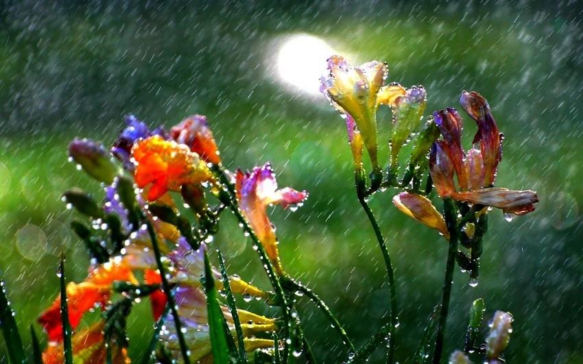Sabah yağış yağacaq - XƏBƏRDARLIQ