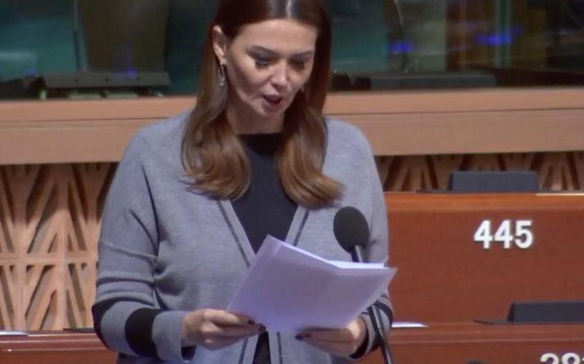 Azərbaycanlı deputat Avropanı terrora dəstək verən siyasətçiləri müdafiə etməməyə çağırıb