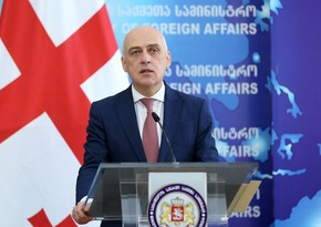 Глава МИД Грузии заразился коронавирусом